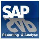 SAP Reporting und Analyse Trainings