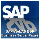 SAP Training WebAS BSP Business Server Pages